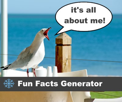 All About Me - Fun Facts Generator