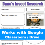 Google Classroom - Insect Research Graphic Organizer