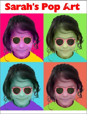 Andy Warhol Pop Art Example - Sarah