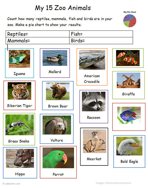 Excel Zoo Animals Chart on Zoo Animal Classification Worksheets