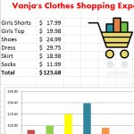 Clothes Shopping Expenses