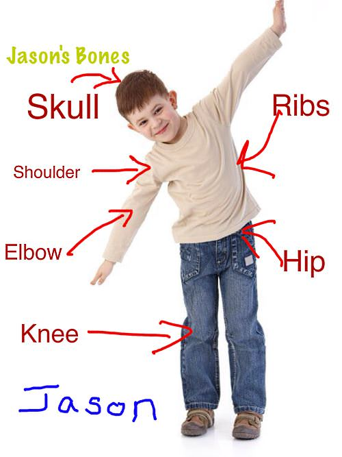 iPad Lesson Plan - Science - Identify and Label Anatomy | K-5 ...