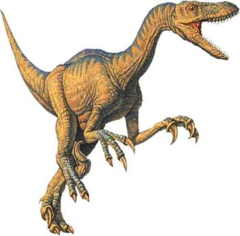 velociraptor fan club