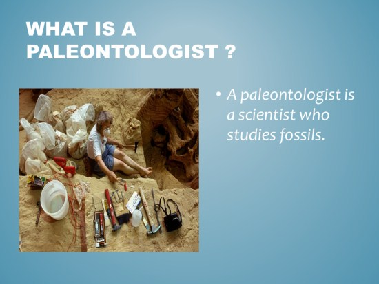 fossils powerpoint activity 2nd grade
